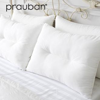 [PRAUBAN] 프라우반 Skin Flex-Five star 기능성 최고급 pillow (경추 / 일반 2종류)